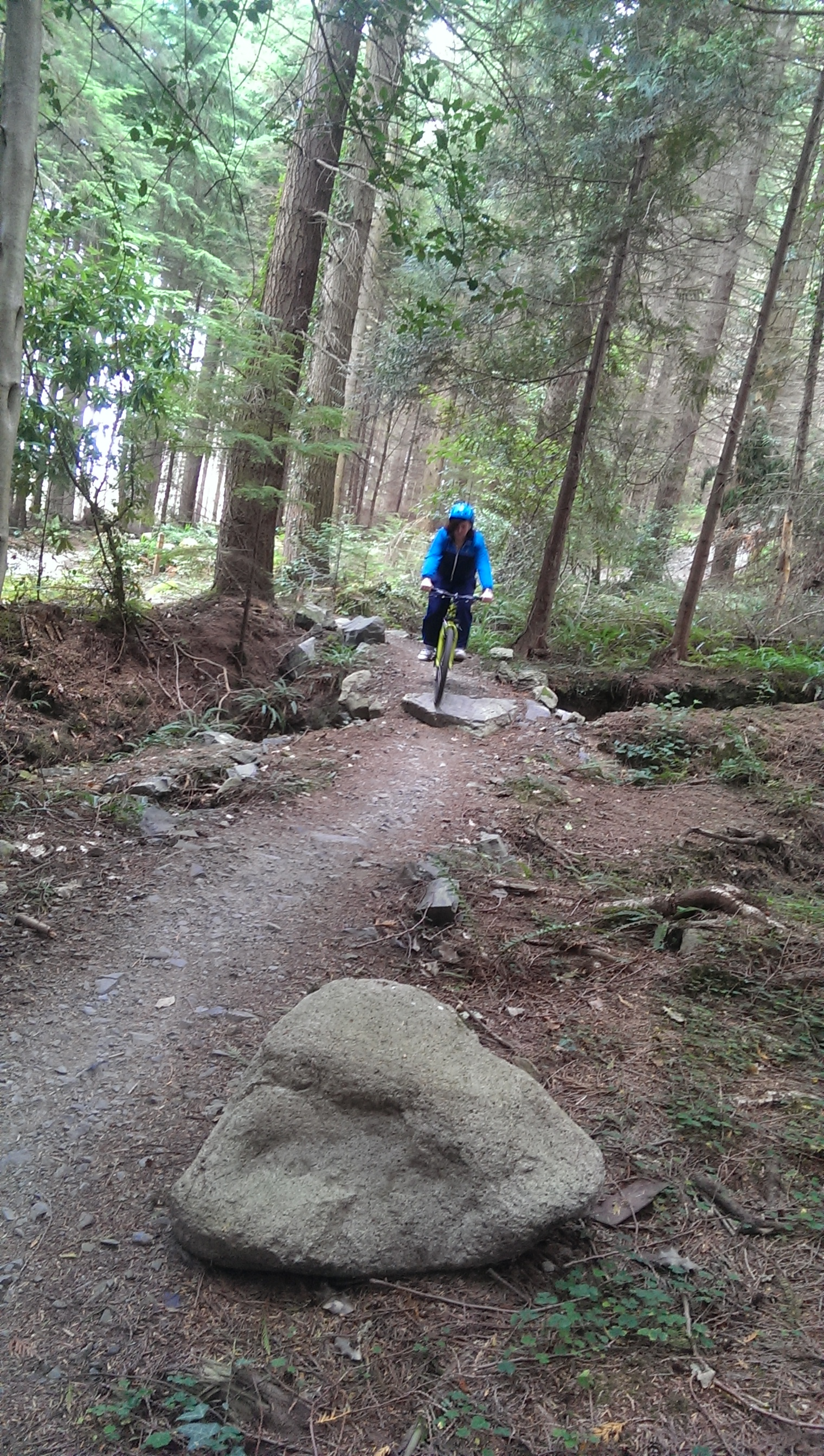 Mountain-biking-track-Co.-Down