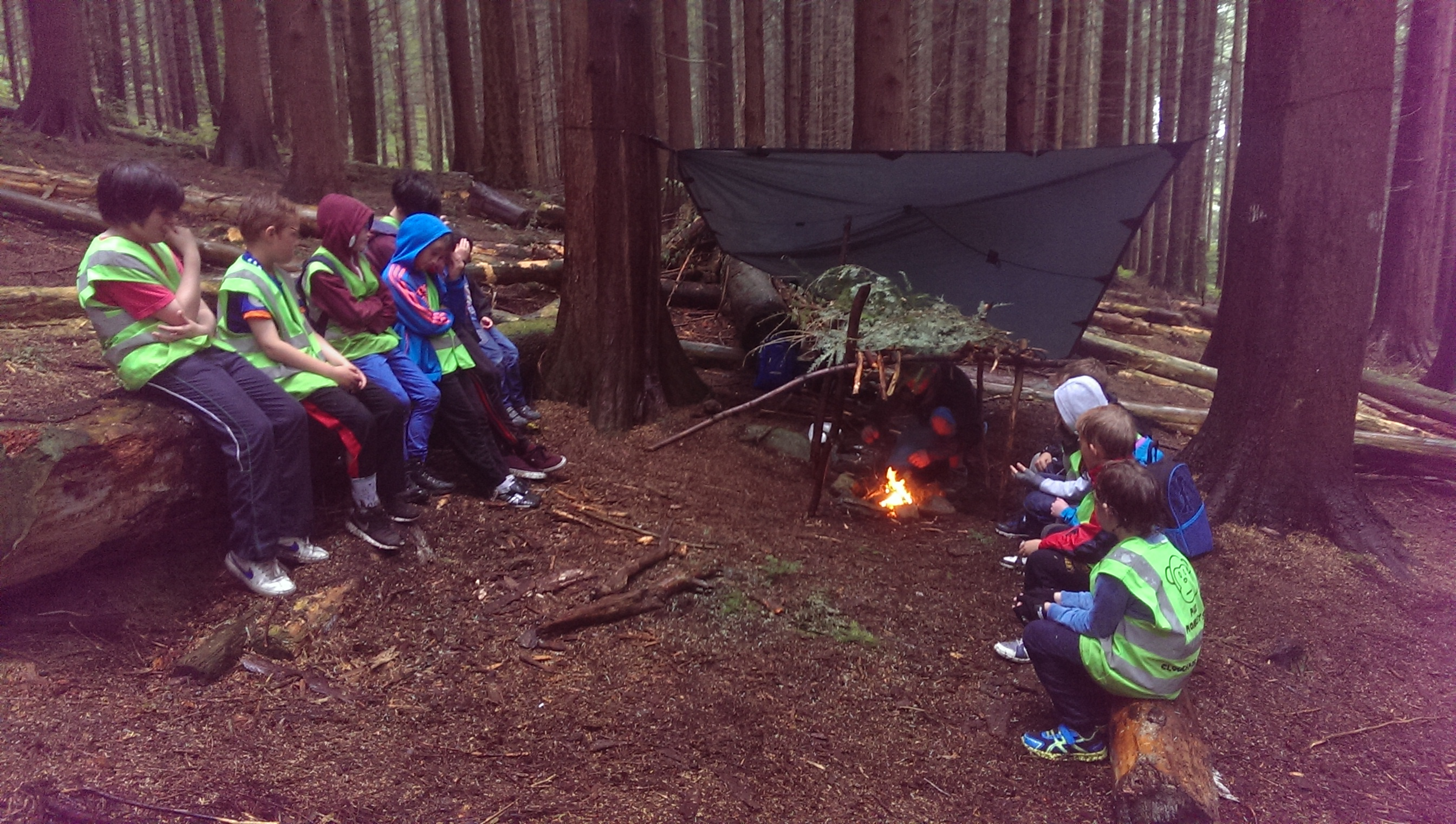 kids-camp-rostrevor