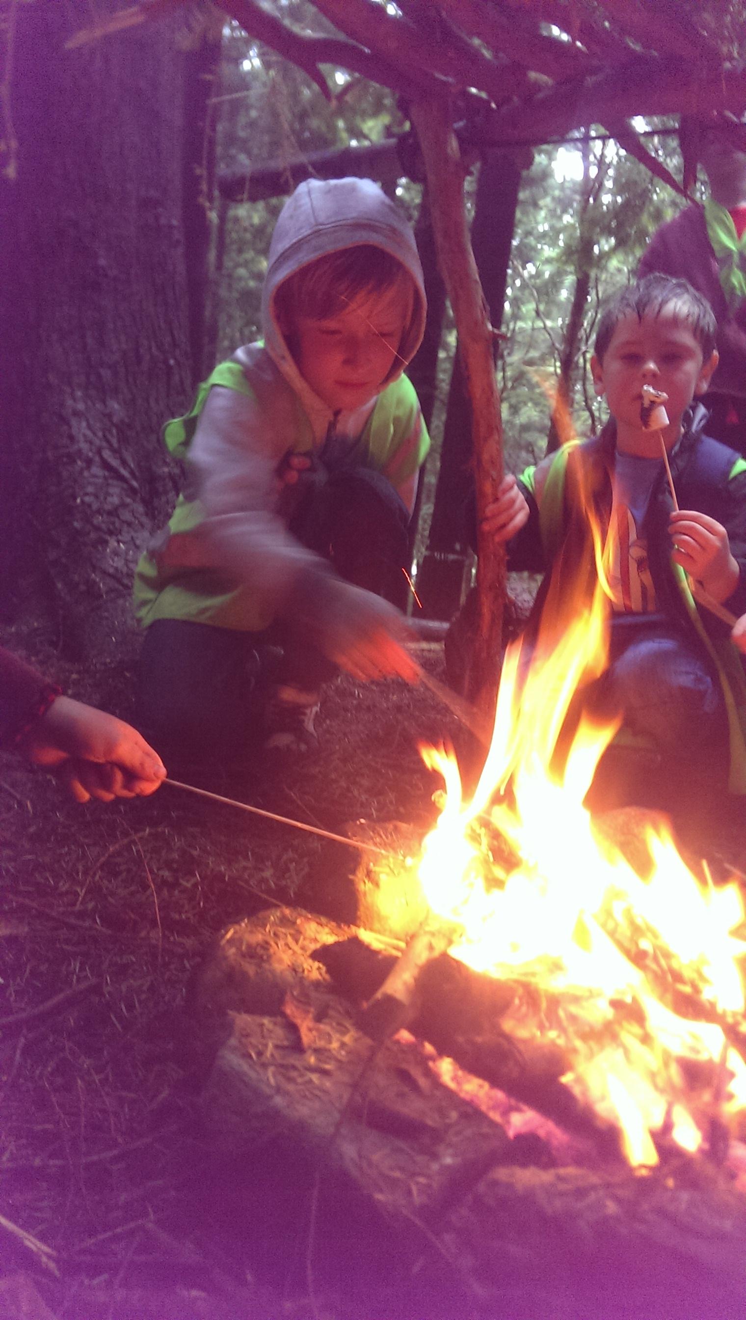 kids-camp-schools