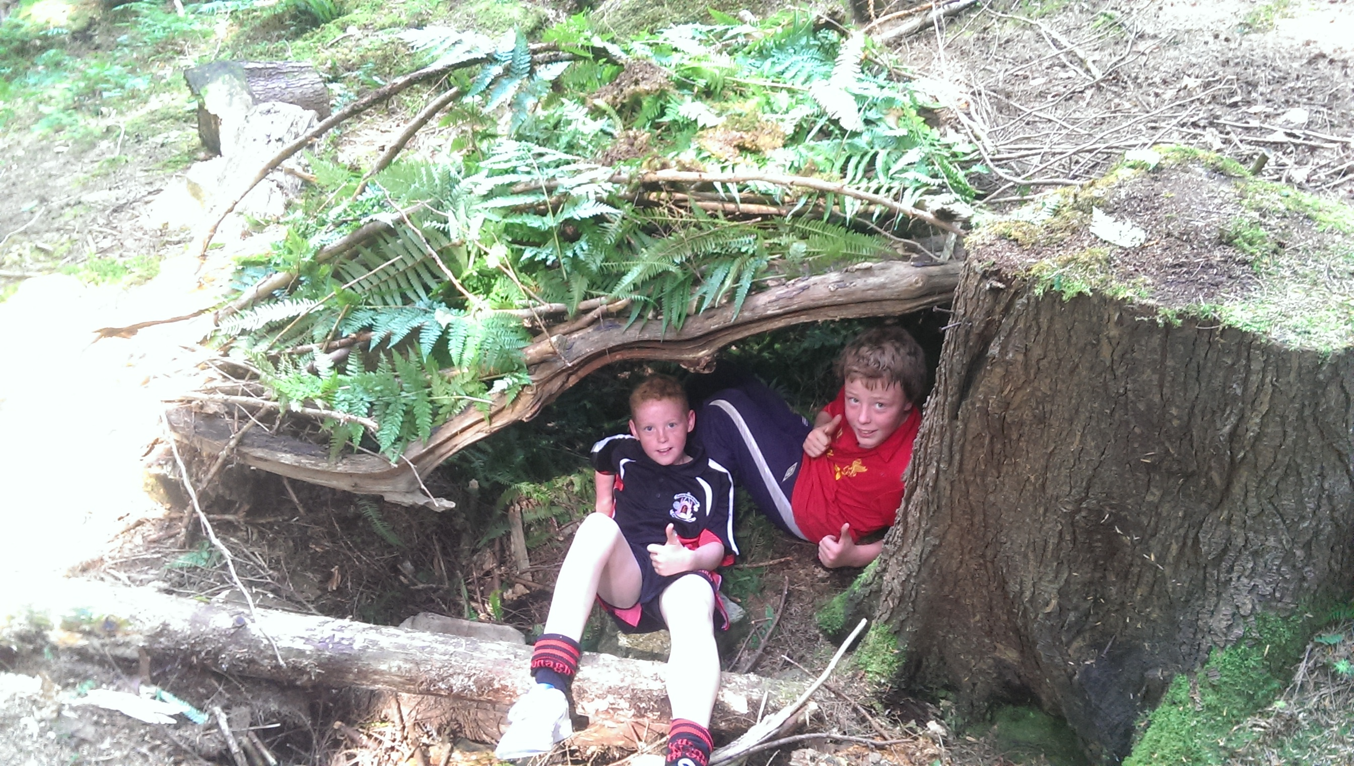 learn-to-camp-for-kids